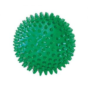 Massage and Sensory Balls